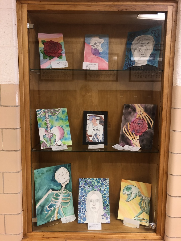 Student artwork display brightening up our WCHS hallway